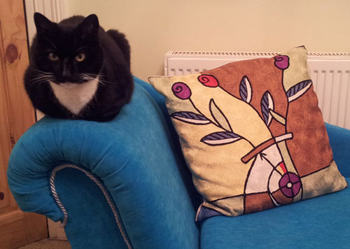 Daisy on chaise longue